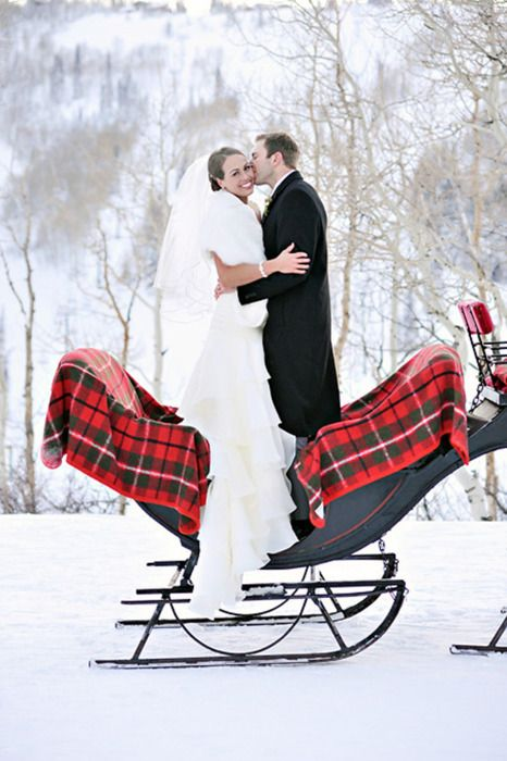 asheville-wedding-snow-sleigh