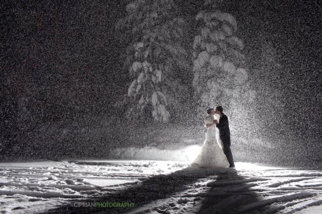 asheville-wedding-winter