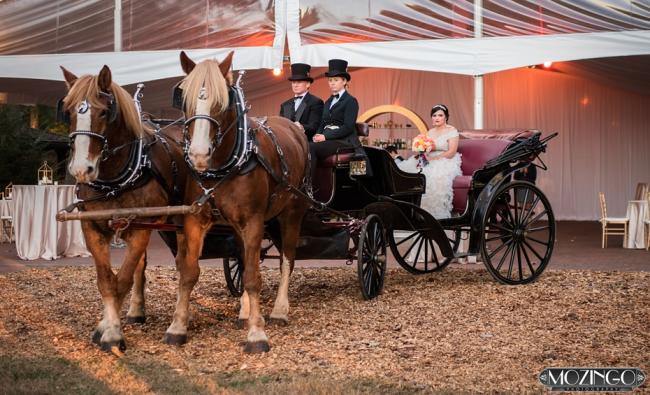 wedding vendors asheville nc
